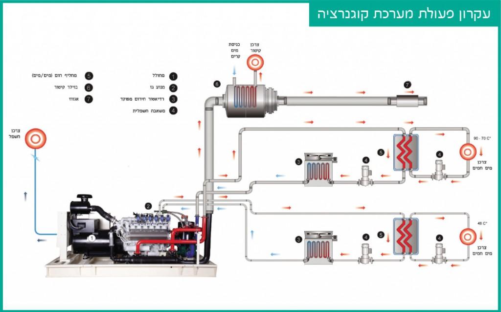 מערכת קוגנרציה, גז טבעי